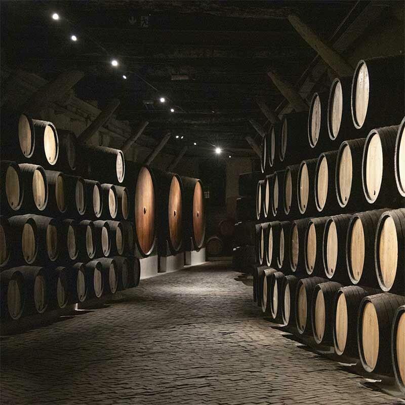 Frankenwein günstig kaufen