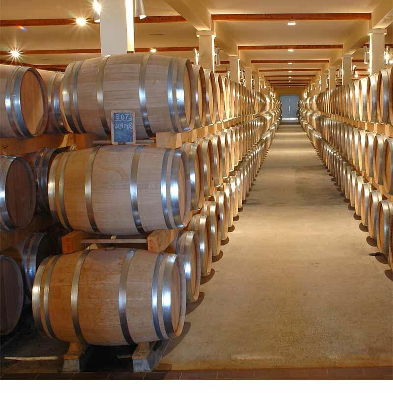 Einsatz von Hefen bei der Weinerstellung