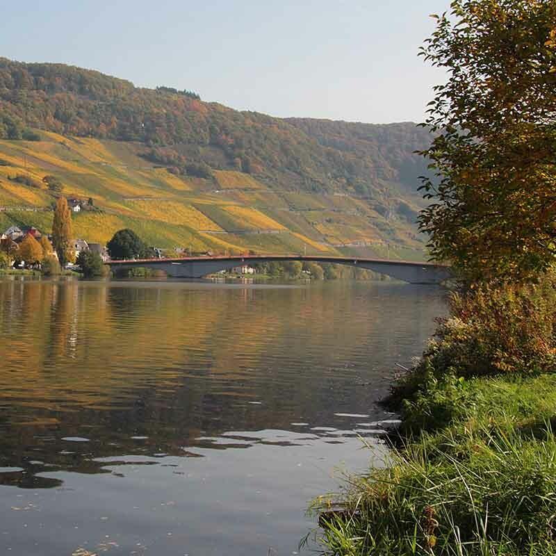 Wein aus der Weinregion Franken