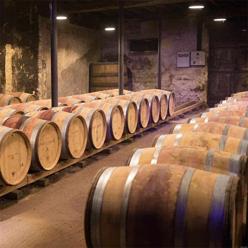 Oechsle im Wein