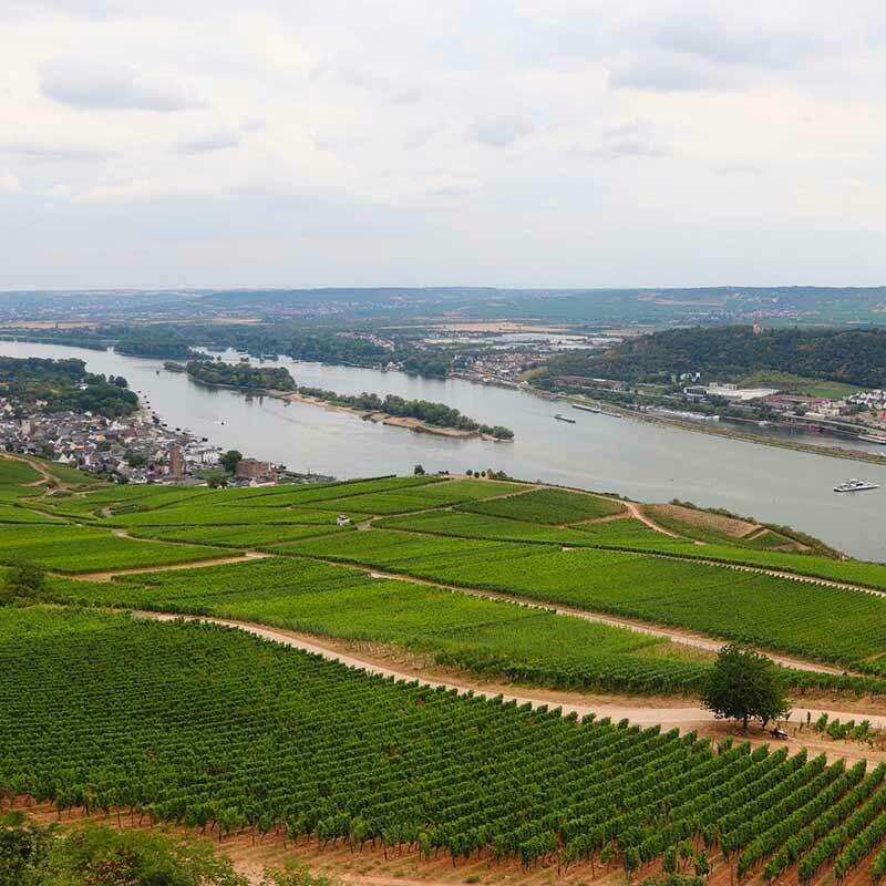 Wein vom Rhein
