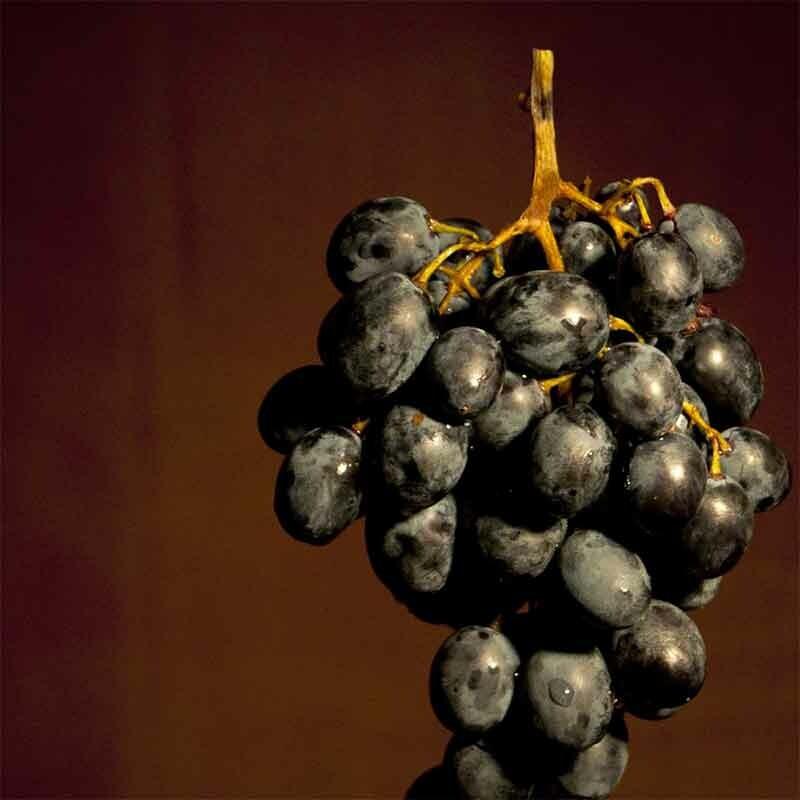 Wein mit hohem Restzucker kaufen