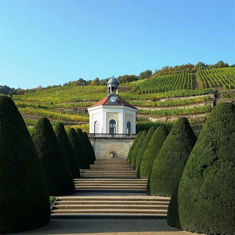 Weingenossenschaften in Deutschland