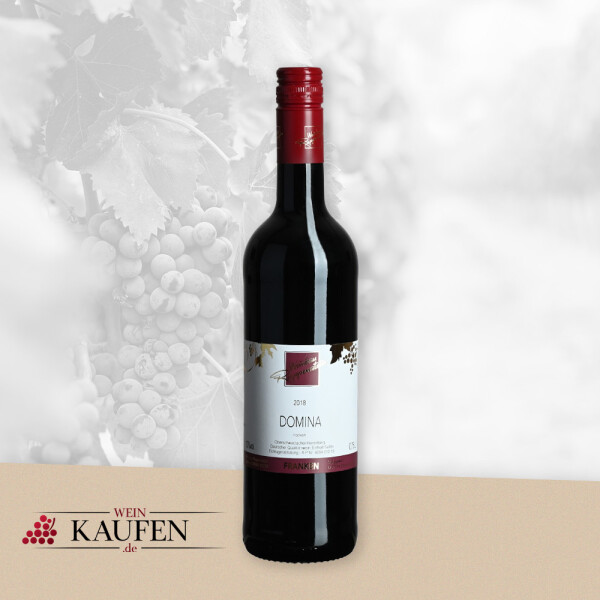 Domina trocken vom Weingut Ruppenstein in Oberschwarzach